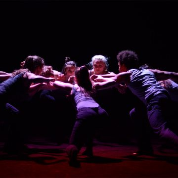 Jahrgang 2013–2016 der Contemporary Dance School Hamburg – Contrahera