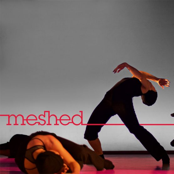 Abschlussprojekt 2016 – meshed – Contemporary Dance School Hamburg