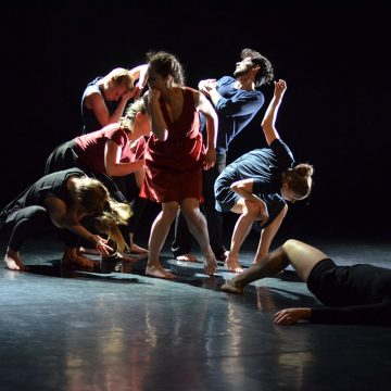 Jahrgang 2012–2015 der Contemporary Dance School Hamburg – TranZgression