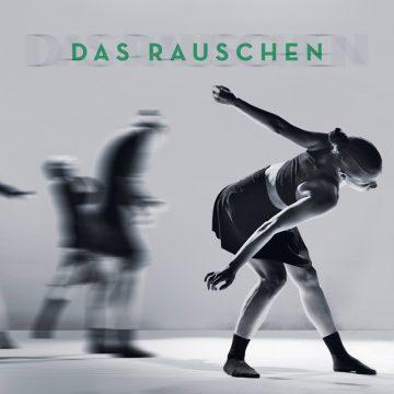 Abschlussprojekt 2017 – Das Rauschen – Contemporary Dance School Hamburg